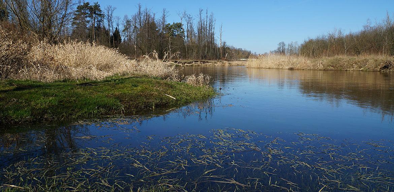 Widok na rzekę Liwiec