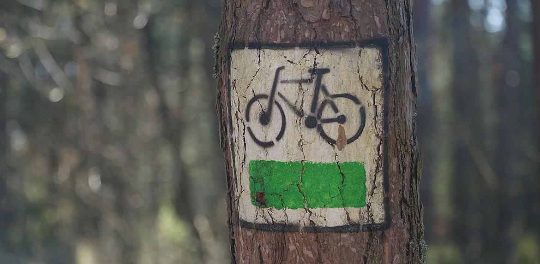 Widok na drzewo i oznaczenie zielonego szlaku rowerowego